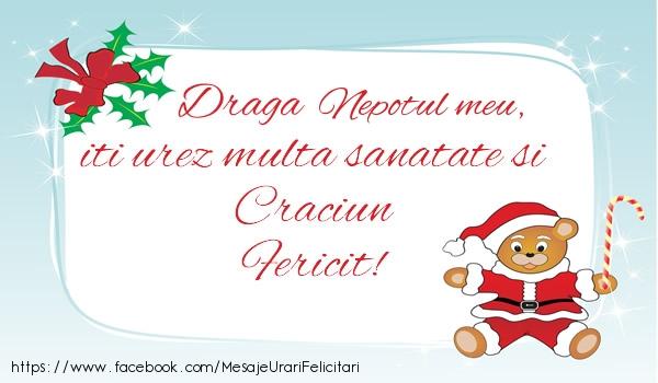 Felicitari de Craciun pentru Nepot - Nepotul meu iti urez multa sanatate si Craciun Fericit!