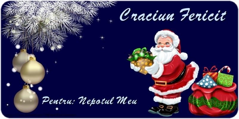 Felicitari de Craciun pentru Nepot - Craciun Fericit nepotul meu
