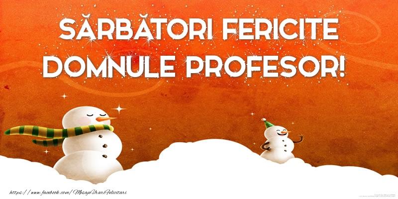 Felicitari de Craciun pentru Profesor - Sărbători Fericite domnule profesor!