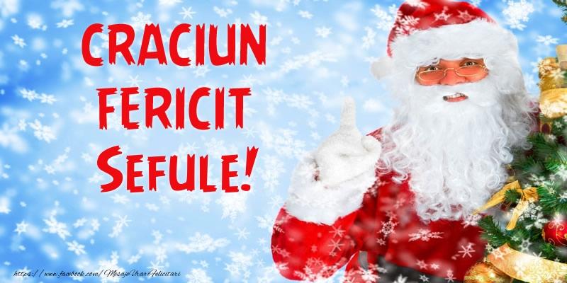 Felicitari de Craciun pentru Sef - Craciun Fericit sefule!