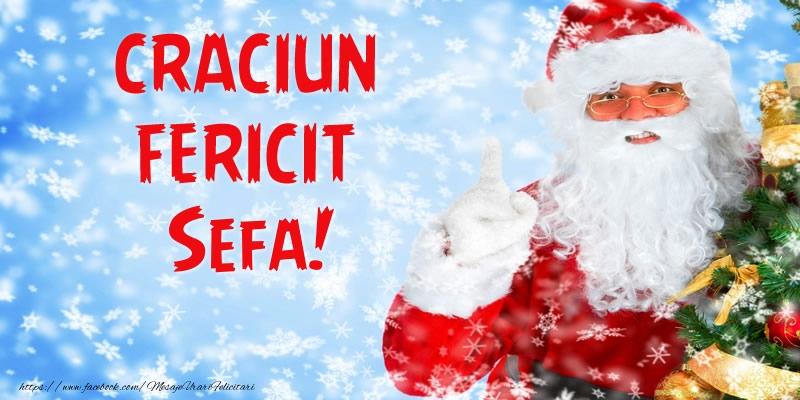 Felicitari de Craciun pentru Sefa - Craciun Fericit sefa!