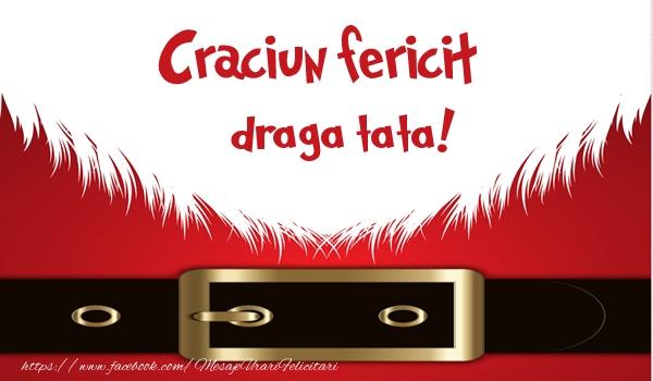 Felicitari de Craciun pentru Tata - Craciun Fericit draga tata!