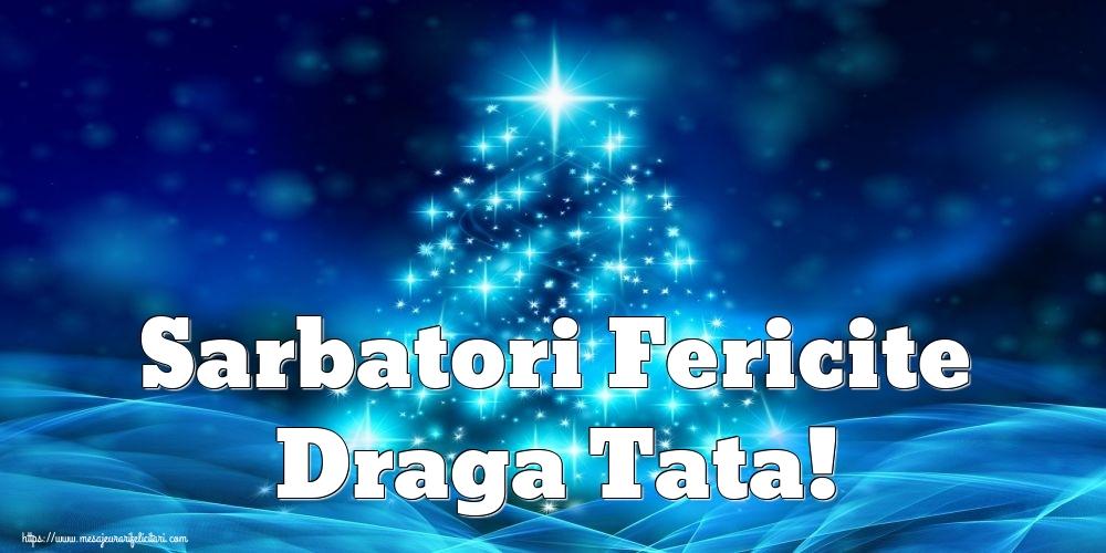 Felicitari de Craciun pentru Tata - Sarbatori Fericite draga tata!