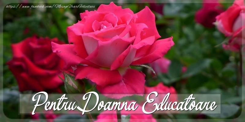 Felicitari Diverse pentru Educatoare - Pentru doamna educatoare