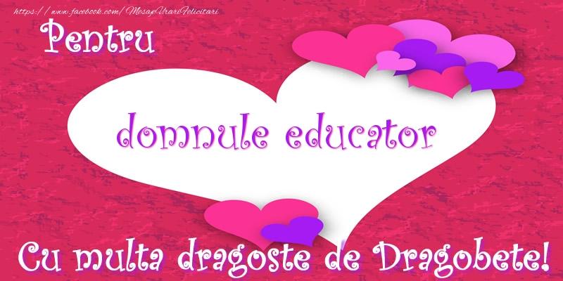 Felicitari de Dragobete pentru Educator - Pentru domnule educator Cu multa dragoste de Dragobete!