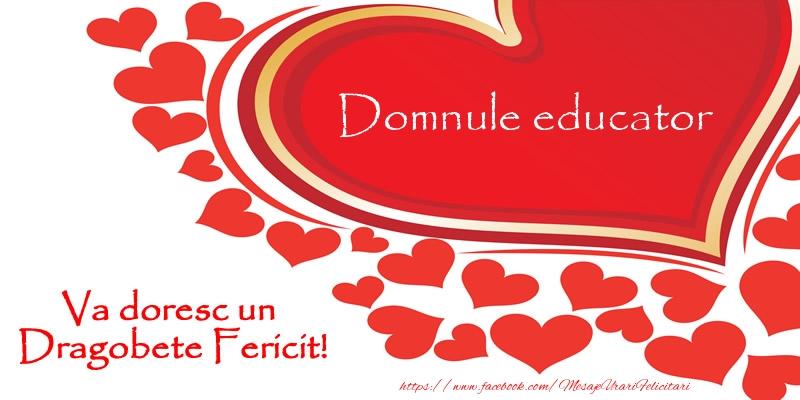 Felicitari de Dragobete pentru Educator - Domnule educator va doresc un Dragobete Fericit!