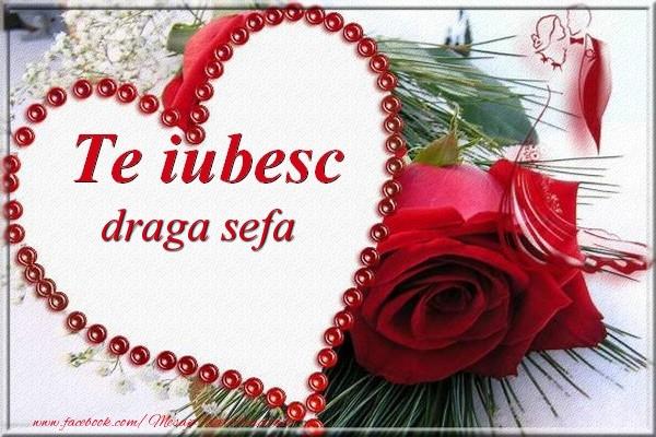 Felicitari de Dragobete pentru Sefa - Te iubesc  draga sefa