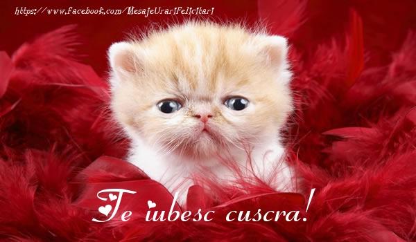 Felicitari de dragoste pentru Cuscra - Te iubesc cuscra!