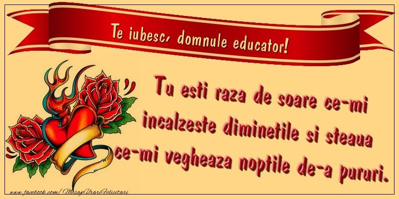 Felicitari de dragoste pentru Educator - Te iubesc, domnule educator. Tu esti raza de soare ce-mi incalzeste diminetile si steaua ce-mi vegheaza noptile de-a pururi.