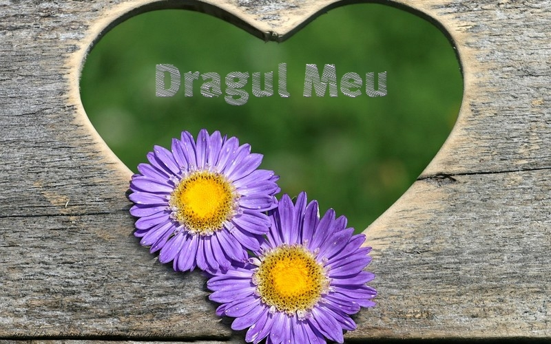 Felicitari de dragoste pentru Iubit - Dragul meu