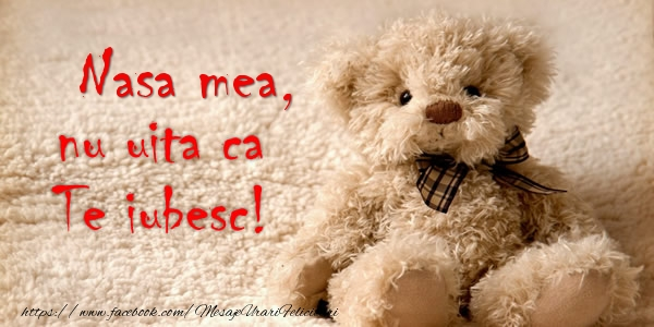 Felicitari de dragoste pentru Nasa - Nasa mea nu uita ca Te iubesc!