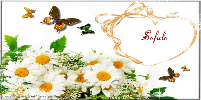 Felicitari de dragoste pentru Sef - I love you sefule!
