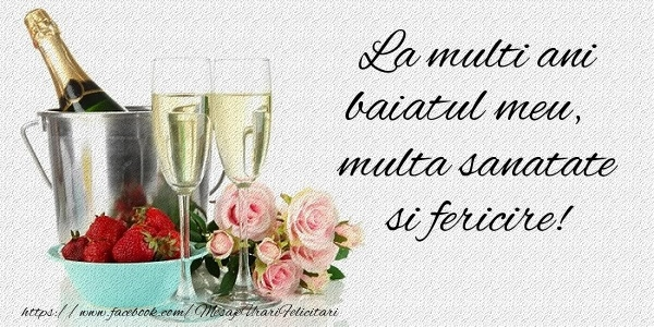 Felicitari de la multi ani pentru Baiat - La multi ani baiatul meu Multa sanatate si fericire!