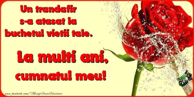 Felicitari de la multi ani pentru Cumnat - Un trandafir s-a atasat la buchetul vietii tale. cumnatul meu