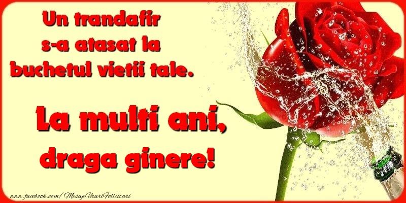 Felicitari de la multi ani pentru Ginere - Un trandafir s-a atasat la buchetul vietii tale. draga ginere