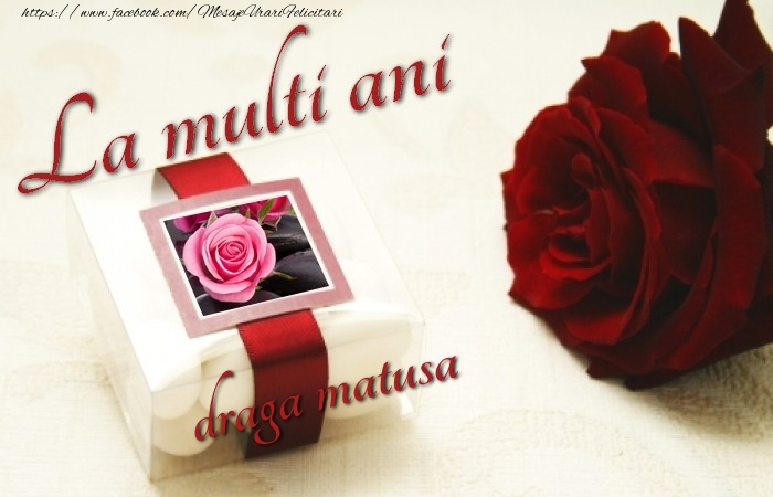 Felicitari de la multi ani pentru Matusa - La multi ani, draga matusa!