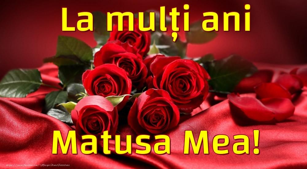 Felicitari de la multi ani pentru Matusa - La mulți ani matusa mea!