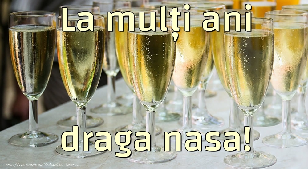 Felicitari de la multi ani pentru Nasa - La mulți ani draga nasa!