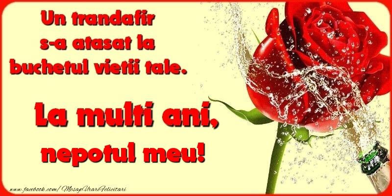 Felicitari de la multi ani pentru Nepot - Un trandafir s-a atasat la buchetul vietii tale. nepotul meu