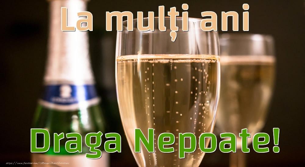 Felicitari de la multi ani pentru Nepot - La mulți ani draga nepoate!