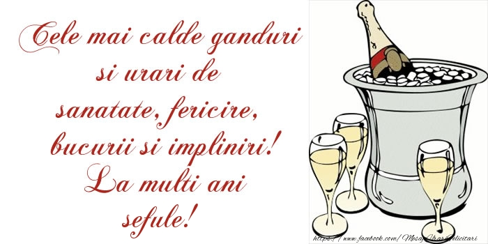 Felicitari de la multi ani pentru Sef - Cele mai calde ganduri si urari de sanatate, fericire, bucurii si impliniri! La multi ani sefule!