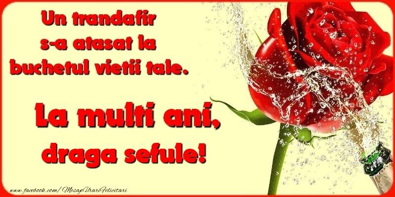 Felicitari de la multi ani pentru Sef - Un trandafir s-a atasat la buchetul vietii tale. draga sefule