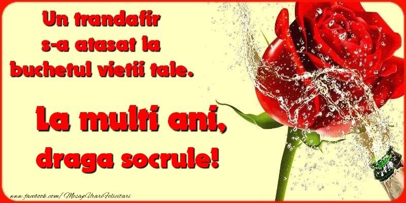 Felicitari de la multi ani pentru Socru - Un trandafir s-a atasat la buchetul vietii tale. draga socrule
