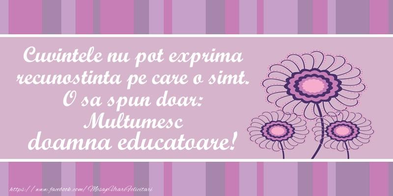 Felicitari de multumire pentru Educatoare - Cuvintele nu pot exprima recunostinta pe care o simt. O sa spun doar:  Multumesc doamna educatoare!