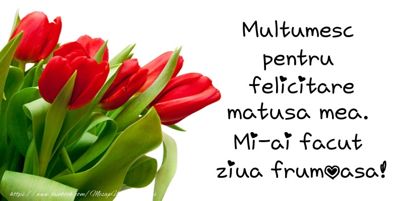 Felicitari de multumire pentru Matusa - Multumesc pentru  felicitare matusa mea! Mi-ai facut  ziua frumoasa!