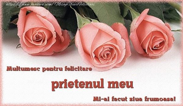 Felicitari de multumire pentru Prieten - Multumesc pentru felicitare prietenul meu! Mi-ai facut ziua frumoasa!