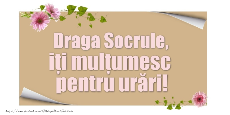 Felicitari de multumire pentru Socru - Draga socrule, iți mulțumesc pentru urări!