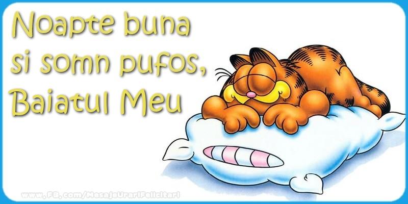 Felicitari de noapte buna pentru Baiat - Noapte buna  si somn pufos,baiatul meu