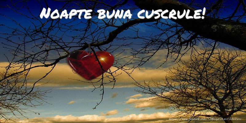 Felicitari de noapte buna pentru Cuscru - Noapte buna cuscrule!