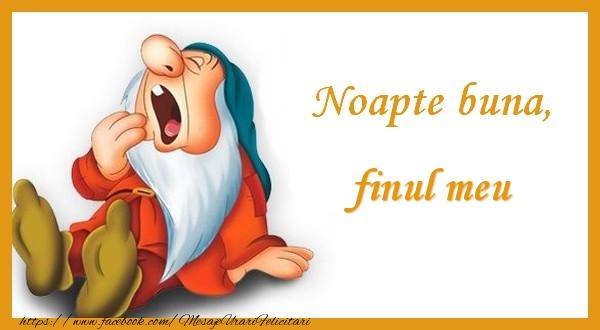 Felicitari de noapte buna pentru Fin - Noapte buna finul meu