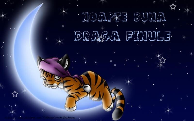 Felicitari de noapte buna pentru Fin - Noapte buna draga finule