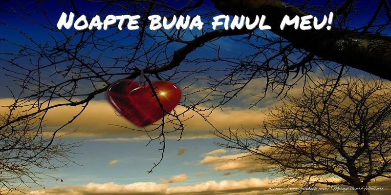 Felicitari de noapte buna pentru Fin - Noapte buna finul meu!