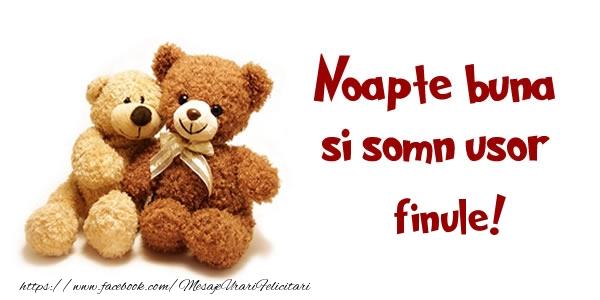 Felicitari de noapte buna pentru Fin - Noapte buna si Somn usor finule!