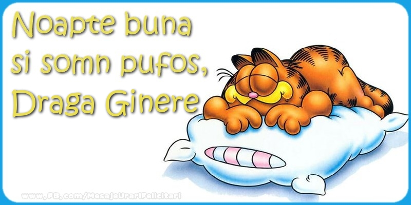 Felicitari de noapte buna pentru Ginere - Noapte buna  si somn pufos,draga ginere