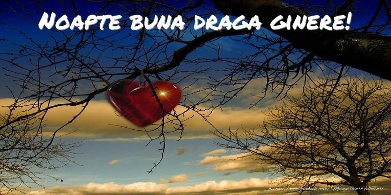 Felicitari de noapte buna pentru Ginere - Noapte buna draga ginere!