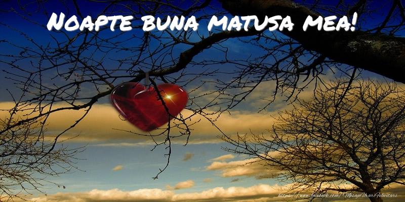 Felicitari de noapte buna pentru Matusa - Noapte buna matusa mea!