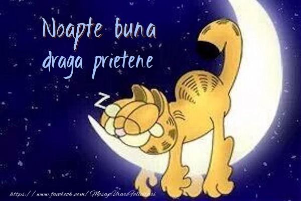 Felicitari de noapte buna pentru Prieten - Noapte buna draga prietene