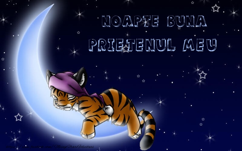 Felicitari de noapte buna pentru Prieten - Noapte buna prietenul meu