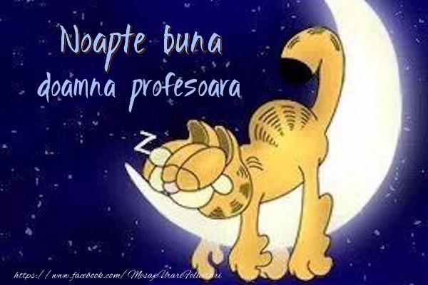 Felicitari de noapte buna pentru Profesoara - Noapte buna doamna profesoara