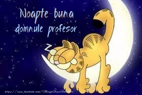 Felicitari de noapte buna pentru Profesor - Noapte buna domnule profesor