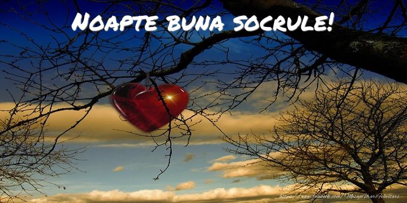 Felicitari de noapte buna pentru Socru - Noapte buna socrule!