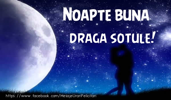 Felicitari de noapte buna pentru Sot - Noapte buna draga sotule!