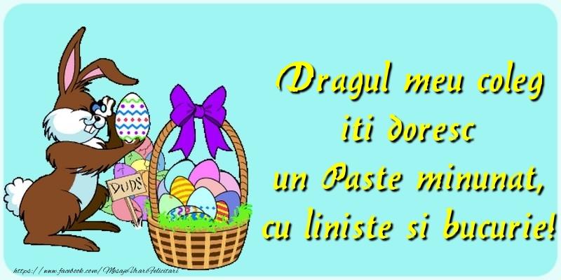 Felicitari de Paste pentru Coleg - Dragul meu coleg iti doresc un Paste minunat, cu liniste si bucurie!
