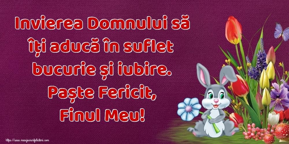 Felicitari de Paste pentru Fin - Invierea Domnului să îți aducă în suflet bucurie și iubire. Paște Fericit, finul meu!
