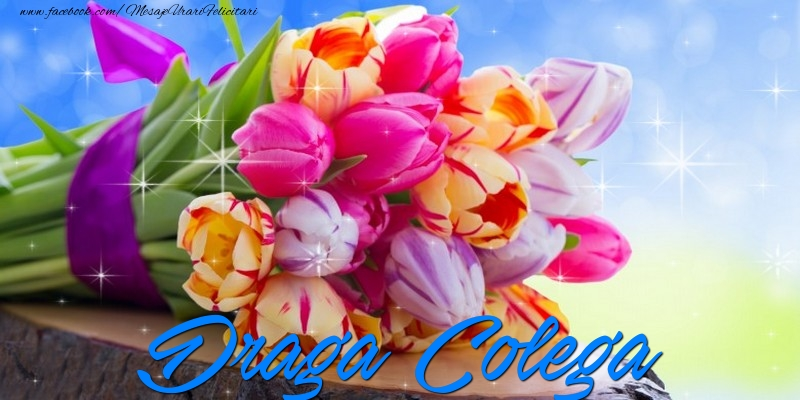 Felicitari de prietenie pentru Colega - Draga colega