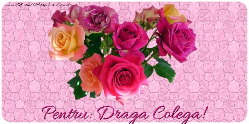 Felicitari de prietenie pentru Colega - Pentru draga colega